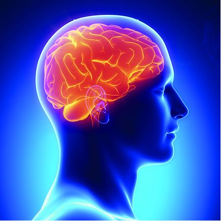 brain-scan-3x3