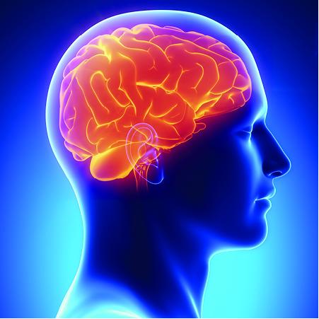 Brain-3x3